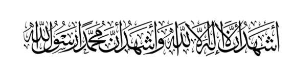 Hasan 144 Small