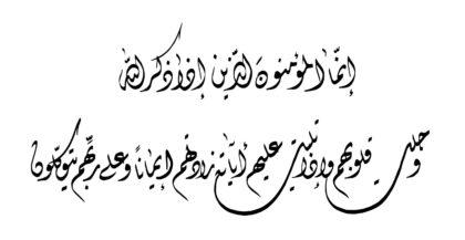 الأنفال ٨ : ٢