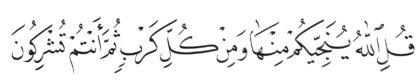 Al-'An'am 6, 64