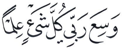 Al-'An'am 6, 80