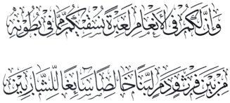 Al Nahl 1666 Thuluth
