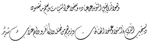 Al Shuraa 42 25 26 Diwani Web