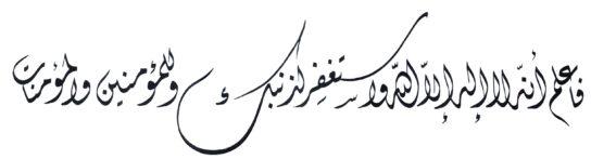 Muhammad 4719 Diwani