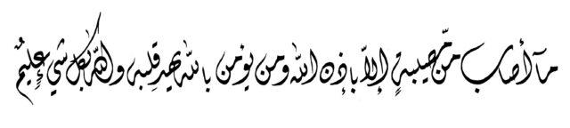 Al Taghabun 64 11 Diwani