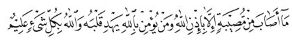 Al-Taghabun 64, 11