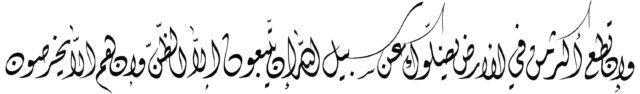 Al Anam 6 116 Diwani