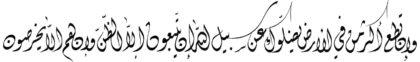الأنعام ٦ : ١١٦