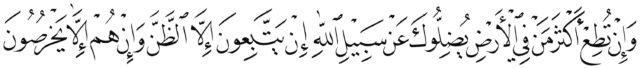 Al Anam 6 116 Naskh