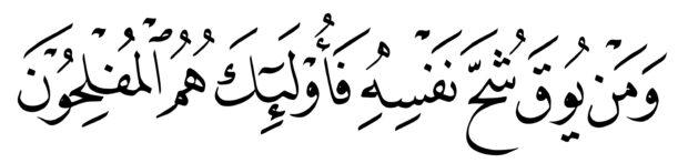 Al Taghibun 64 16 Naskh