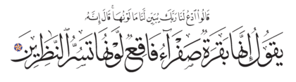 Al-Baqarah 2, 69