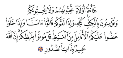 Al-'Imran 3 ،119