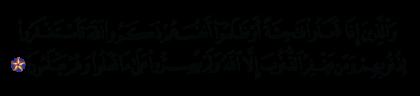 Al-'Imran 3 ،135