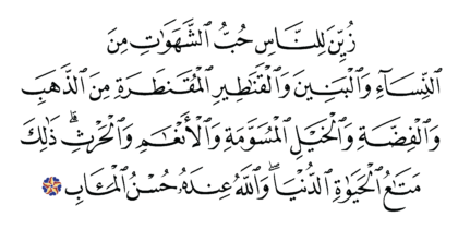 Al-'Imran 3, 14