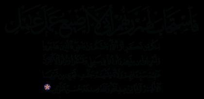 Al-'Imran 3 ،195