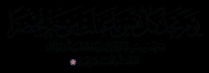Al-'Imran 3, 30