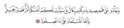 Yusuf 12, 18