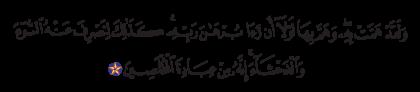 Yusuf 12, 24