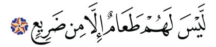 al-Ghāšiyah 88, 6
