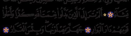 Ibrahim 14, 28