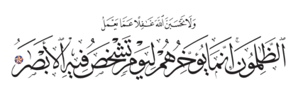 Ibrahim 14, 42