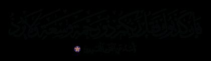 Al-An'am 6, 147
