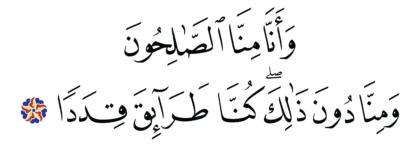 Al-Jinn 72, 11