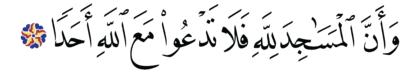 Al-Jinn 72, 18