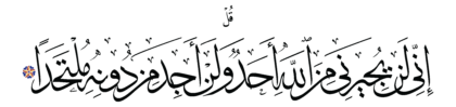 Al-Jinn 72, 22