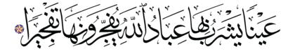Al-Insan 76, 6