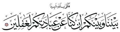 Yunus 10, 29