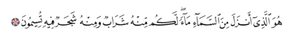 Al-Nahl 16, 10