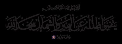 Al-Nahl 16, 48
