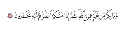 Al-Nahl 16, 53