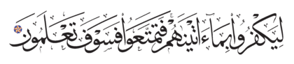 Al-Nahl 16, 55