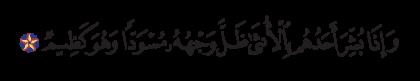 Al-Nahl 16, 58