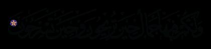 Al-Nahl 16, 6