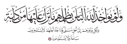Al-Nahl 16, 61