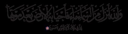 Al-Nahl 16, 65