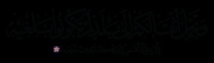 Al-Nahl 16, 7
