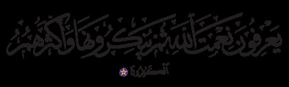 Al-Nahl 16, 83