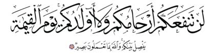 Al-Mumtahanah 60, 3