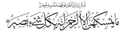 Al-Mulk 67, 19