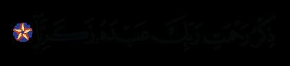Maryam 19, 2