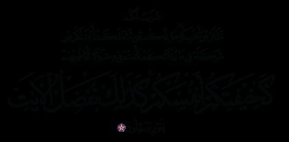 Al-Rum 30, 28
