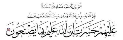 Al-Fatir 35, 8