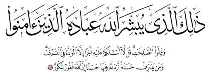 Al-Shura 42, 23