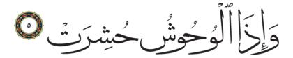 Al-Takwir 81, 5