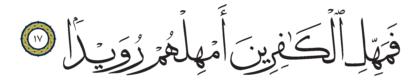 Al-Tariq 86, 17