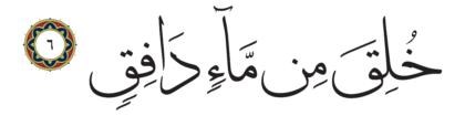 Al-Tariq 86, 6