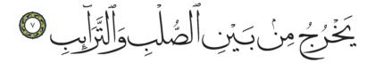 Al-Tariq 86, 7